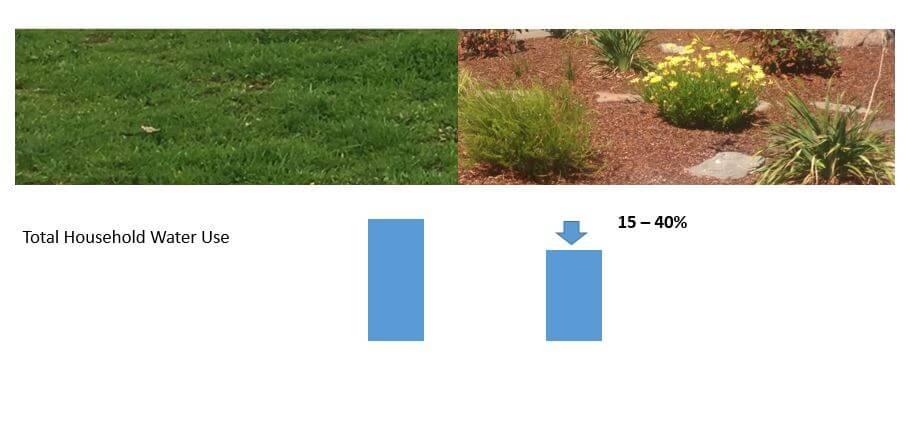 Water saving by water efficient garden