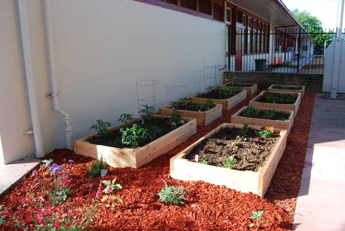 Turn an Empty School Lot Into a Veggie Garden