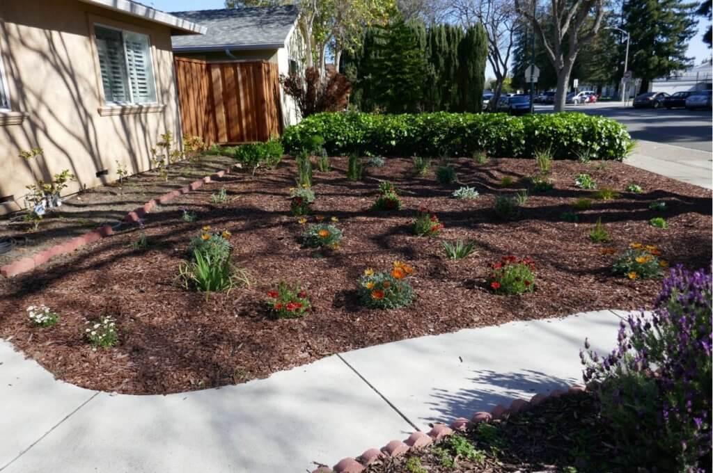Water Efficient Garden