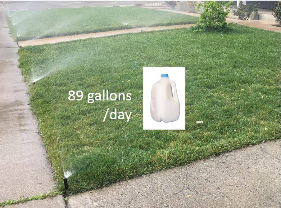 water use for lawn