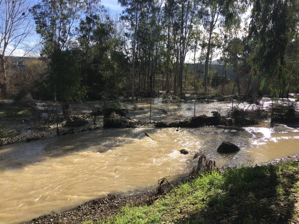 Flood at Los Gatos Creek
