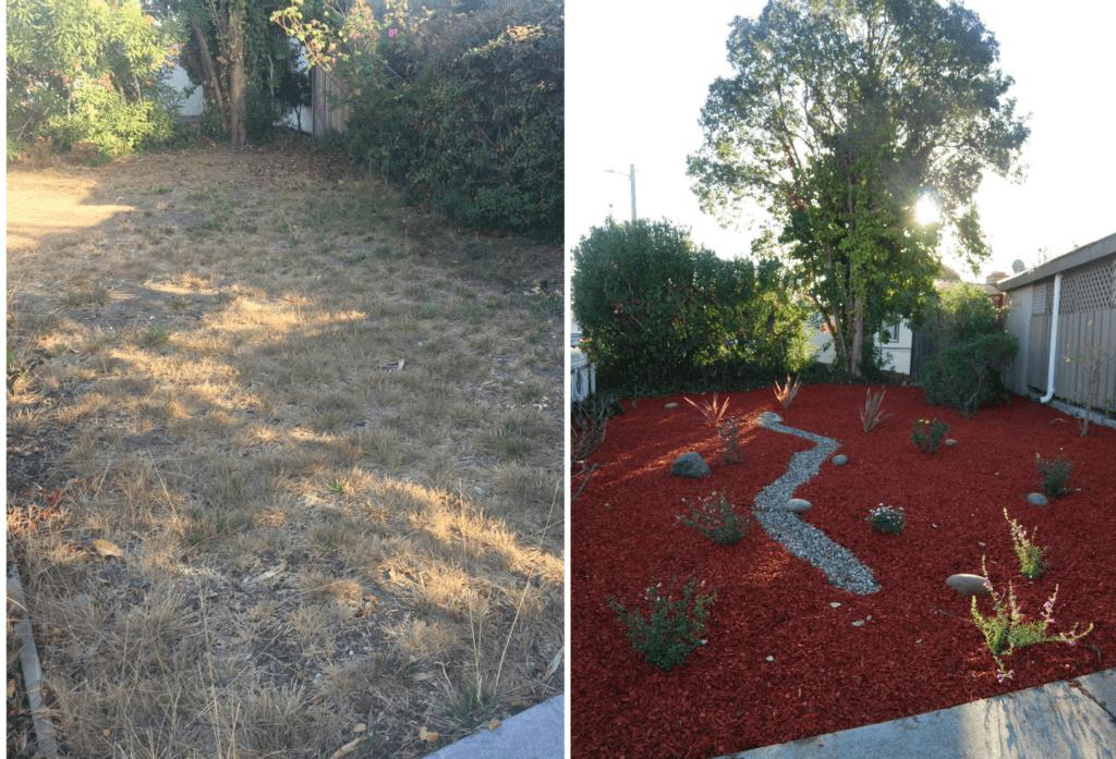 lawn to water efficient garden conversion