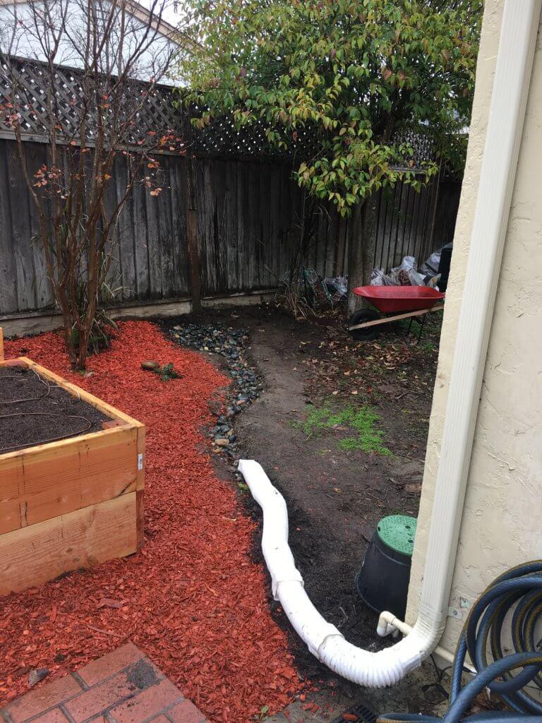 backyard rain garden